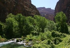 Montagnes de gorge de Havasu. Photo libre de droits