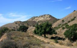 Montagnes de gorge de pierre à chaux Images libres de droits