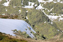 Montagnes de gredos de neige Photo libre de droits