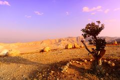 Montagnes de Judea photo libre de droits