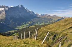 Montagnes de Jungfrau Image libre de droits