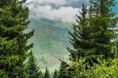 Montagnes de Karacol, rivière, arbres, été photographie stock libre de droits