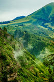 Montagnes de Karacol, rivière, arbres, été image libre de droits