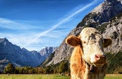Montagnes de Karwendel Images libres de droits