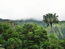Montagnes de Kooalu Photos stock