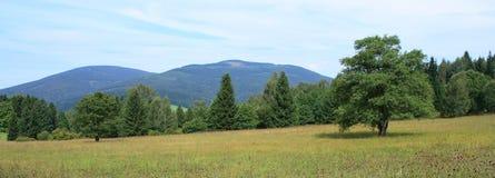 Montagnes de Krkonose Photos stock