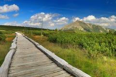 Montagnes de Krkonose avec la crête de Snezka Images libres de droits