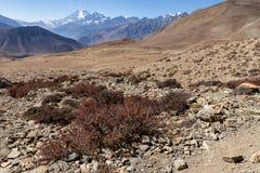 Montagnes de l'Himalaya, Népal Photographie stock