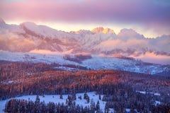 Montagnes de l'hiver Beau paysage avec les sommets neigeux à la lumière du soleil rose de matin photo stock