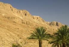 Montagnes de l'Israël Image libre de droits