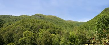 Montagnes de la Caroline du Nord Image stock