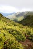 Montagnes de la Madère Photos stock