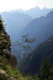 Montagnes de la Slovénie Photos libres de droits