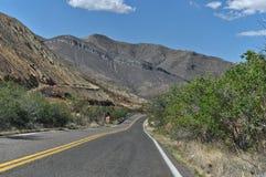 Montagnes de mule Image stock