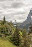 Montagnes de Murren photos libres de droits