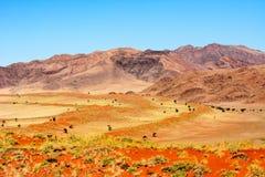 Montagnes de Naukluft Images stock
