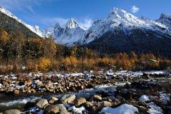 Montagnes de neige avec des arbres Images stock