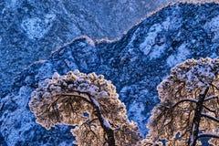 Montagnes de neige de montagne Photos libres de droits