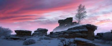 Montagnes de neige, roches et arbres de bouleau images libres de droits