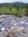 Montagnes de Nord-Trondelag, Norvège Image libre de droits