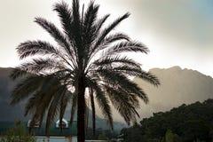 Montagnes de Palma à l'arrière-plan Photographie stock