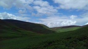 Montagnes de paysage photo libre de droits