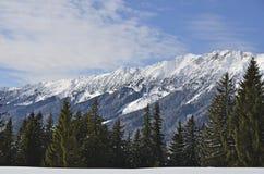 Montagnes de Piatra Craiului Images libres de droits