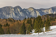 Montagnes de Postavaru Images libres de droits