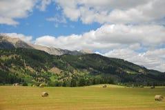 Montagnes de prairie de fauche Photographie stock