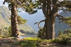 Montagnes de Pyrénées Image libre de droits