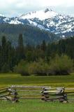 Montagnes de renoncule Image libre de droits