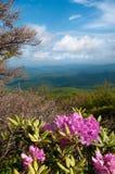Montagnes de Ridge bleu Images libres de droits