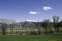 Montagnes de San Juan Images libres de droits
