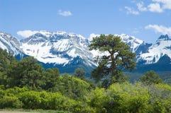 Montagnes de San Juan en juin Photographie stock libre de droits