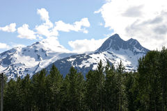 Montagnes de Skagway Photos stock