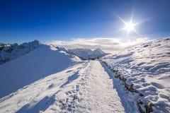 Montagnes de Tatra dans l'horaire d'hiver neigeux Photographie stock libre de droits