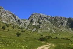 Montagnes de Trascau, Transylvanie, Roumanie Photos stock