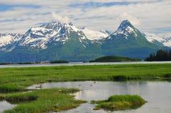 Montagnes de Valdez Photographie stock libre de droits