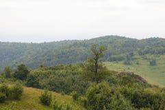 Montagnes de village de photo Image stock