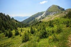 Montagnes de visiteur Photos libres de droits