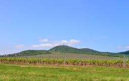 Montagnes de Vrsac Serbie Photos libres de droits