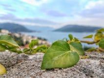 Montagnes de vue d'adriaticsea de Hercegnovi Monténégro Photo libre de droits