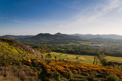 Montagnes de Wicklow Images libres de droits
