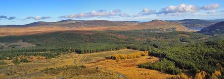 Montagnes de Wiclow images libres de droits