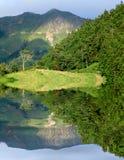 Montagnes des Açores photos libres de droits
