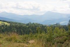Montagnes des Carpathiens Photos libres de droits