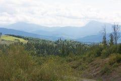 Montagnes des Carpathiens Images libres de droits