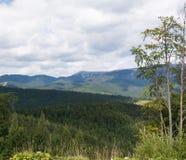 Montagnes des Carpathiens Photographie stock