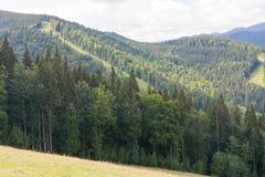 Montagnes des Carpathiens Photographie stock libre de droits