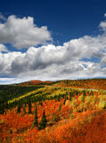 Montagnes du Yukon - de Richardson Image stock